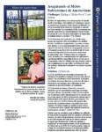 Metro de Amsterdam Case Study PDF